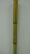 Raw fresh cut bamboo pole @ http://southernbamboo.us