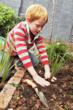 School gardening projects can benefit from buying in bulk