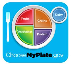 USDA's New Choose My Plate Guidelines