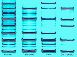 vertical columns are specific DNA sequences of family members that are displayed on one DNA portrait