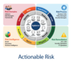 Agiliance Risk Wheel