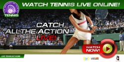 US Open Tennis 2011 live stream - watch US Open Tennis online free