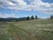 United Country, Montana Land Auction