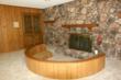 Burr Ridge Fireplace