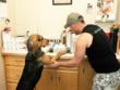 Secret the dog helps Shawn Claybaugh, director at Paul Mitchell Schools, pick out shampoo for her bath at Best Friends Animal Society's sanctuary.