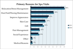 Primary Reason for Spa Visit