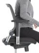 Celesse, Friant & Associates' new mid-back office chair, brings the lumbar support far-forward to the popular mid-way on the seat position.