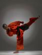 Hollywood Stunt Fighting Meets Shaolin Sanshou: The Ultimate Seminar