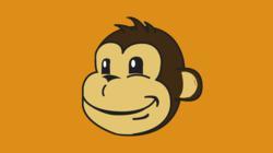 The Parcel Monkey Logo in Orange
