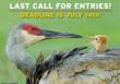 NWF Wants Your Great Nature Photos