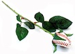 Texas Rangers Feature Baseball Roses at the Ballpark