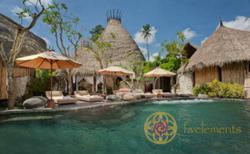 Fivelements Puri Ahimsa in Bali