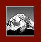 Alpine Property