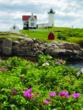 bike tour New England, bike tours in Maine, cycling vacations New England