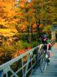 bike tour fall foliage, fall foliage cycling, Berkshires bike tour, Berkshires bike tours