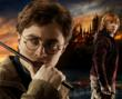 """Harry Potter and the Deathly Hallows, Part 2"" Sparks ""Wizards"" Sale at Home and Bedroom"