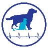 Massachusetts animal hospital, animal hospitals in ri, emergency vet ri