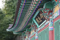 Korea Meditation Tour: Dahn Yoga Workshop