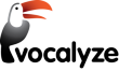 Vocalyze Media logo