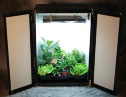 New Discount Grow Box Released At Dealzer Com Hydroponic