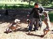 San Francisco Dog Walking Service Superdog Offers Tips for Street...