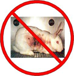 Animal Testing Is Bad Science: Point/Counterpoint