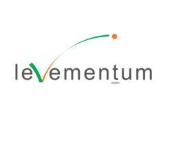Levementum  - CRM/xRM Consulting