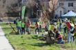 Washington, D.C. Receives B- on Casey Trees' Tree Report Card...