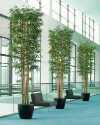 Large 12' Realistic Silk Trees