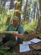 Research team leader, Bob Van Pelt, examines data sheets made during mapping of the 1‐hectare plot in Calaveras Big Trees State Park. Photo by Stephen Sillett, Institute for Redwood Ecology,  Humboldt