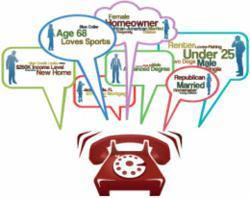 Caller Demographic Information