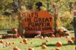 The Great Pumpkin Patch at the Great Smoky Mountains Railroad!