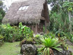 EL Monte Cloud Forest Lodge