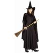 Classic Wicked Witch Costume for Adults
