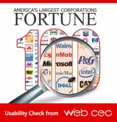 Fortune 100 Companies' usability check conducted by Web CEO