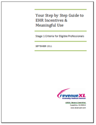 RevenueXL Releases a Step by Step Guide to EHR Incentives ...