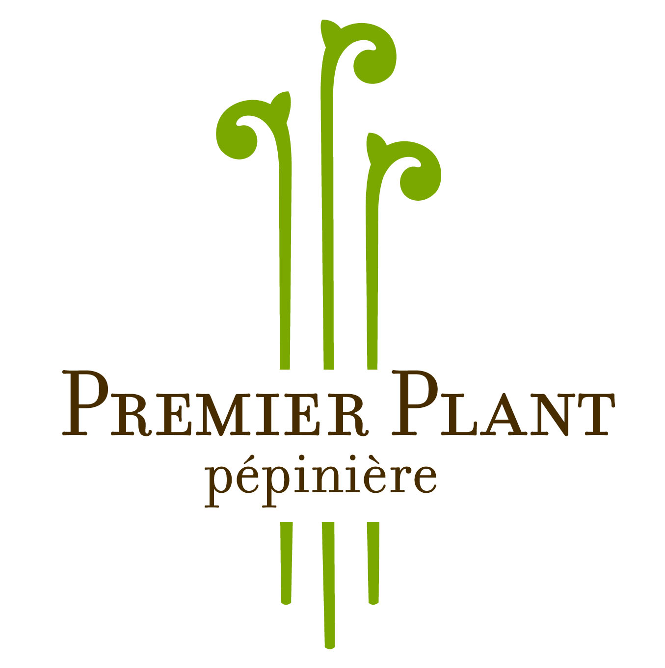 Liveroof llc selects p pini re premier plant inc as for Pepiniere