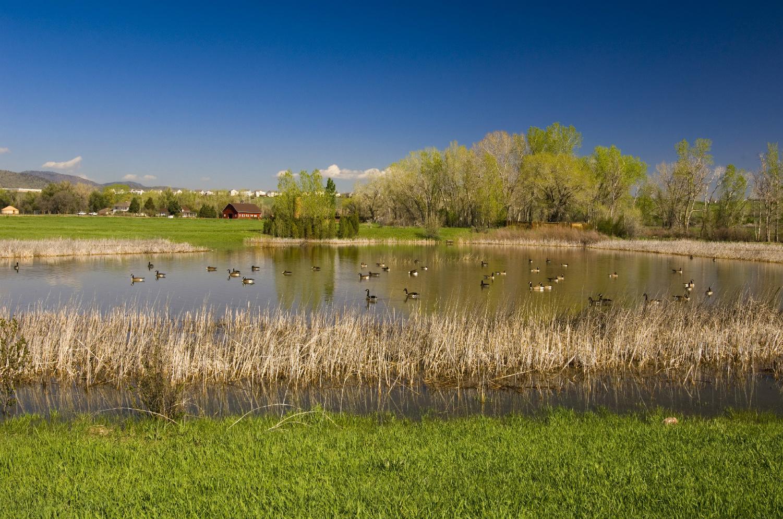 Denver Botanic Gardens At Chatfield Opens New Visitor S