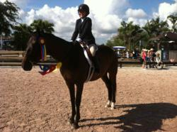 Maya Stratemann, Son of a Witch, a six-year-old gelding fostered by Elite Thoroughbred Adoptions; Florida Thoroughbred Retirement and Adoptive Care, TRAC,