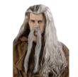 Wizard Costume Wig