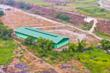 Tgeg Biosphere plant
