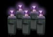 5mm Purple LED Halloween Lights