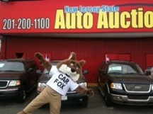 carfox visits new jersey state used car auto auction in jersey city nj. Black Bedroom Furniture Sets. Home Design Ideas