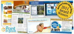 Website design, logo design, e-newsletter design, award-winning designers, The BLU Group, advertising, branding, marketing, print advertising,