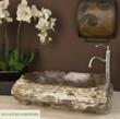 Petrified Wood Vessel Sinks from Signature Hardware
