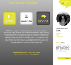 Small Business Web Design Company Redesigns its Site Snapshot