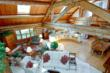 @properties Lists Renowned Tree Sanctuary and Home For Sale In Cary, Illinois