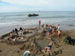 Hot Water Beach is one of two new locations offered by the Kiwi Bus Tour Company