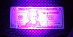 395 nm UV light on $20 US dollar bill