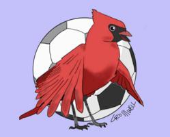 Creative Quickies Cartoon Logos
